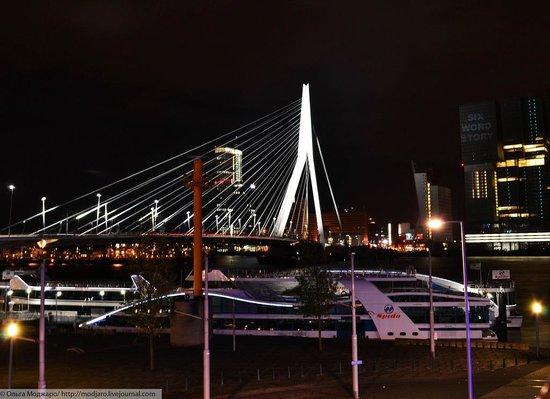Thon Hotel Rotterdam: Вид из номера вечерний