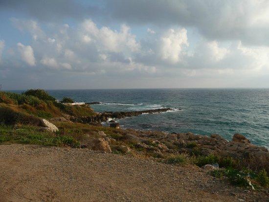 Helios Bay Hotel : Пляж