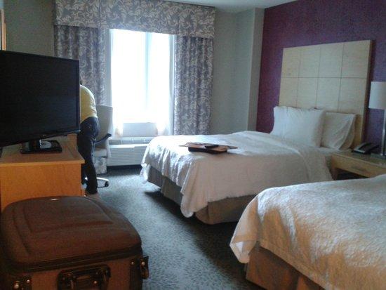 Hampton Inn & Suites by Hilton - Miami Brickell Downtown : Apartamento twin