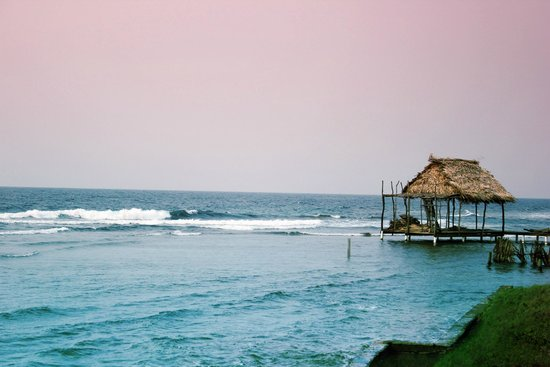 Bananarama Beach and Dive Resort : Honduras