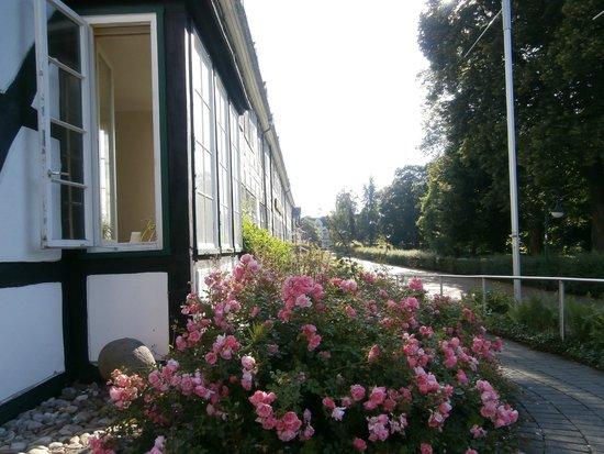 Quality Hotel Vital zum Stern: Back of hotel overlooking the Kurhaus Gardens