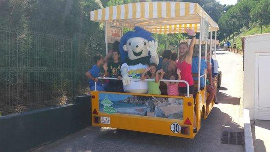 Camping Cala Gogo: Mascota Gogy en la Gua Gua