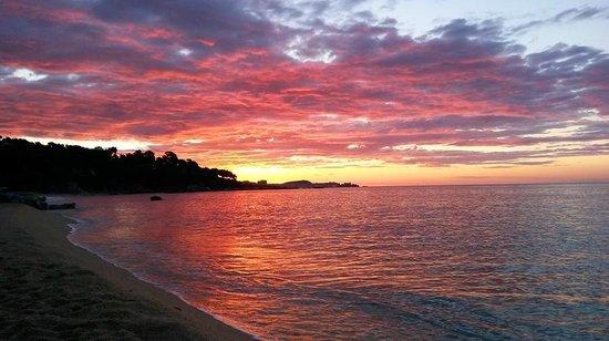 Camping Cala Gogo: Panorama playa Cala Gogo