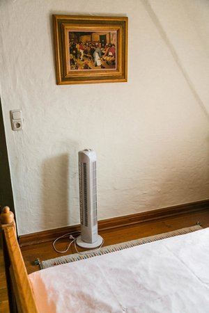 Hotel Spitzweg: Fan included
