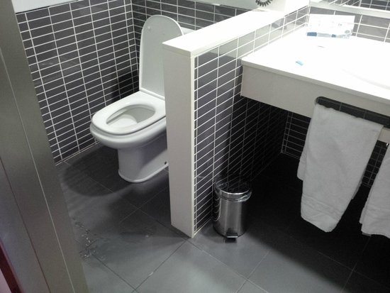 FrontAir Congress: Wheelchair Inaccessible toilet 1st room