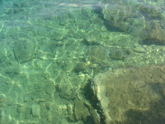 Island Hotel Istra: The crystal clear sea water