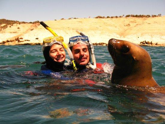 Master Divers Patagonia