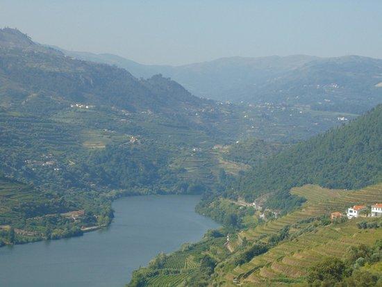 Cooltour Oporto: Douro Valley Tour