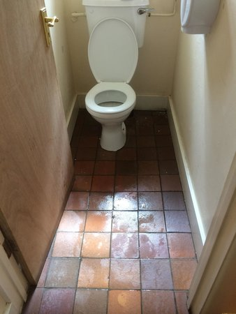The Trusty Servant: The state of the toilet when we visited.