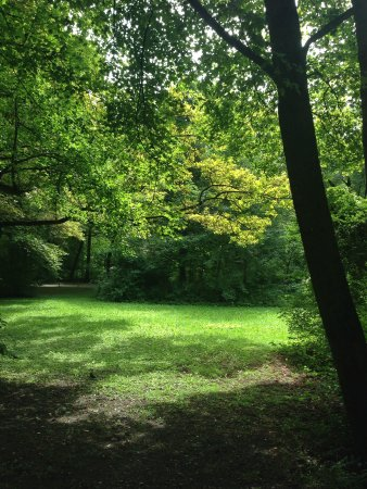 Jardín inglés: Beautiful greenery