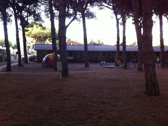 Village Golfo degli Etruschi: Pineta
