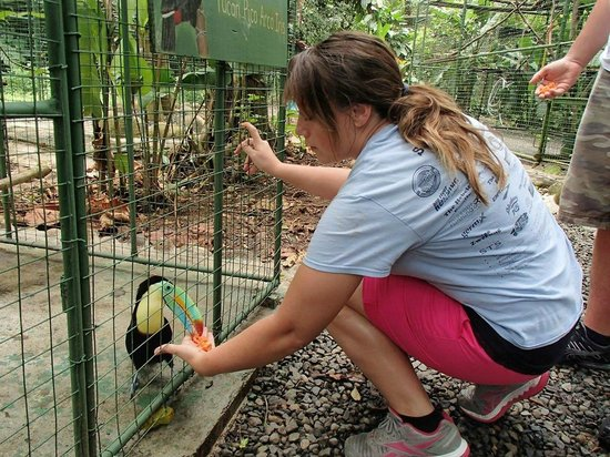 Proyecto Asis: Feeding all different types of animals was great