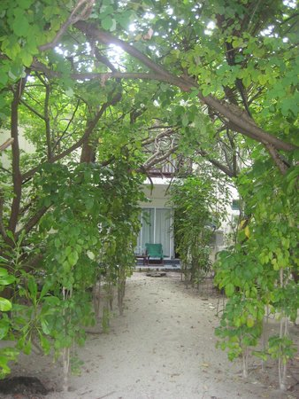 Biyadhoo Island Resort: Вход с пляжа в наш номер.