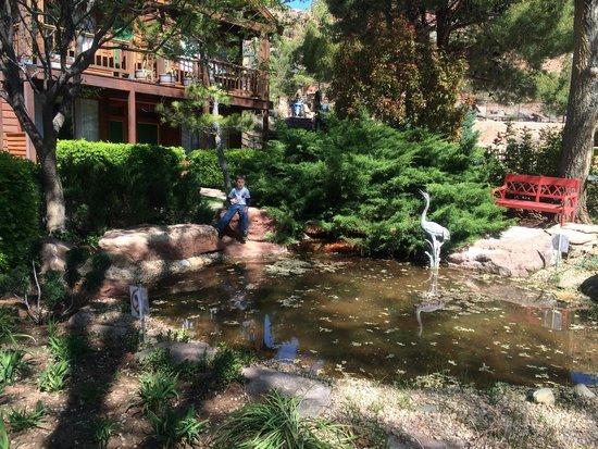 Flanigan's Inn: Courtyard with koi pond