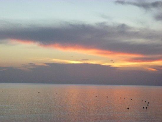 Occidental Cozumel : every night