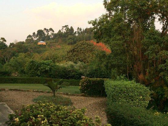 Clouds Mountain Gorilla Lodge: gardens