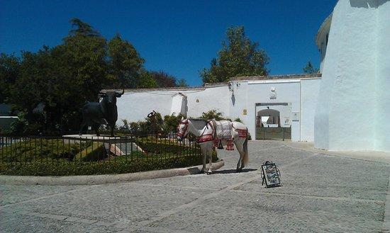 Plaza de Toros: Площадь перед ареной для боя быков в Ронде