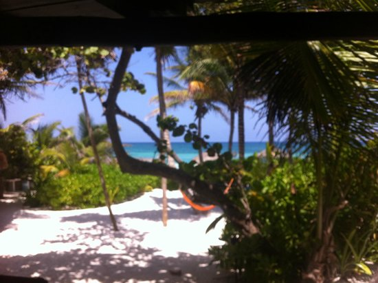 Playa Selva : Vue de la terrasse