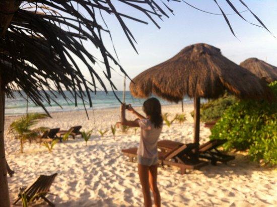 Playa Selva : La plage, ses transats..