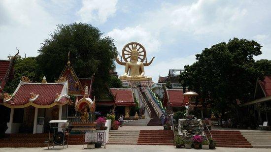 Villa Tanamera: big buddha temple