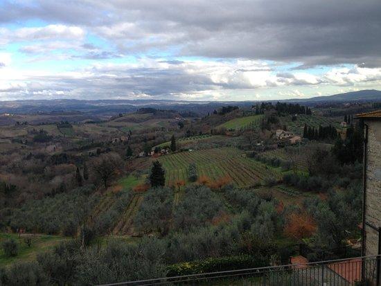 Fattoria Poggio Alloro: View (from iPhone, sorry)