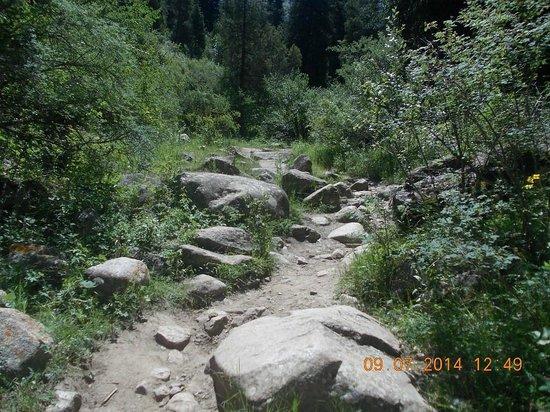 Ala-Archa Gorge: Вот такие тропы в горах....
