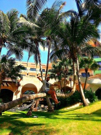 Melia Las Americas: park around the hotel