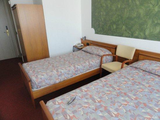 Hotel Valpolicella International : Habitación