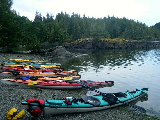 Kingfisher Wilderness Adventures - Orca Waters Kayak Day Trips: Kayaks on the beach where we stopped for lunch!