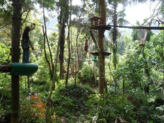 Tree Top Adventure Park Krabi: На трассе.