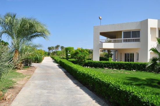 Hilton Hurghada Long Beach Resort: отель
