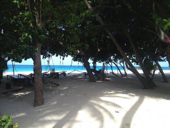Bikini beach obr zek za zen thundi guest house for L esterno del ristorante sinonimo