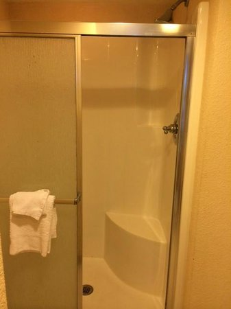 Marriott Beach Resort and Marina Hutchinson Island : Outdated Shower