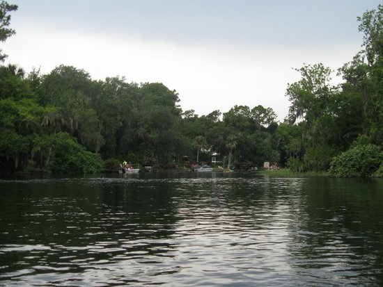 Rainbow Springs State Park: gorgeous scenary