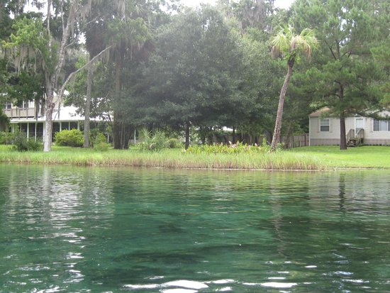 Rainbow Springs State Park: see the clear blue springs throughout the river