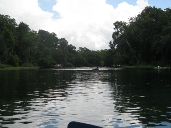 Rainbow Springs State Park: wide river