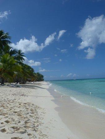 Natura Park Beach - EcoResort & Spa: ils de saona