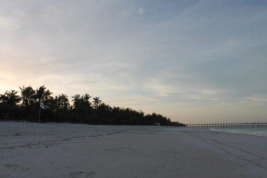 Dongwe Club: spiaggia e palmeti
