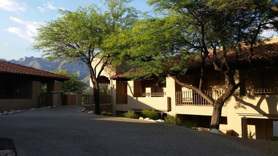 """Westin La Paloma Resort and Spa: Building """"F"""". Lower floor rooms are on ground level and have MUCH less of a view and can be dark"""