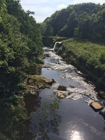 Etherow Country Park: View from the bridge