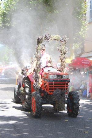 Ce Nid d'Aigle : The lavender festival