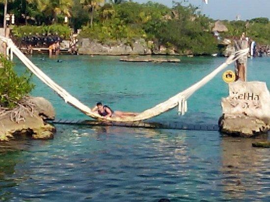 Parc Xel-Ha : Gran amaca en medio de la laguna