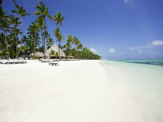 Barcelo Bavaro Beach - Adults Only: Best beach I have been to