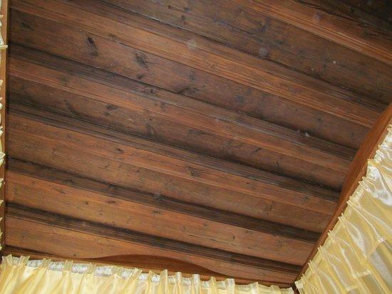 Residence Muzeum Vltavinu : Wooden ceiling