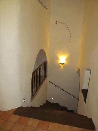 Residence Muzeum Vltavinu : Hotel corridor