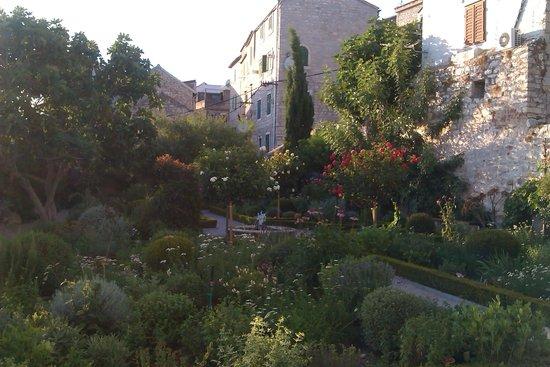 Medieval Mediteranean Garden: сад