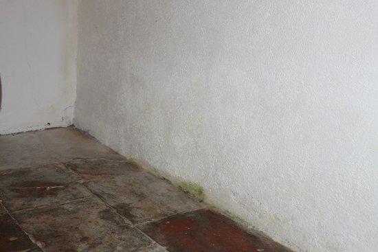 Chateau de Fajac la Selve: Bas du mur de la chambre double qui présente de l'humidité