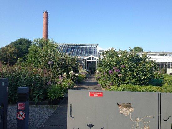 De Kas: beautiful grounds