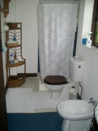 Forncett, UK: The ensuite shower room.