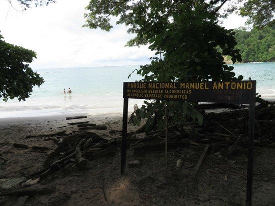 Playa Manuel Antonio: Beach Area